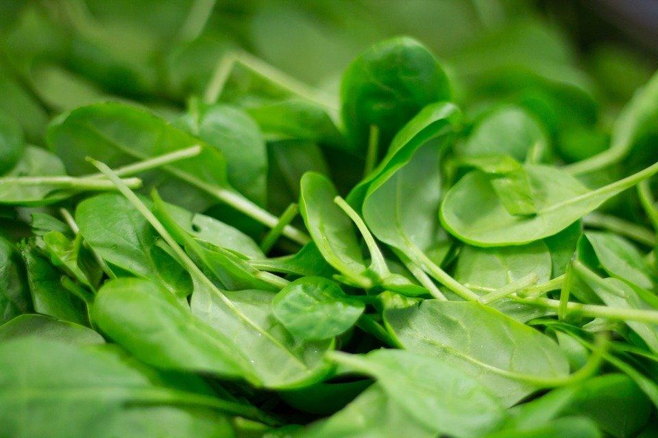 liście szpinaku, witamina b9