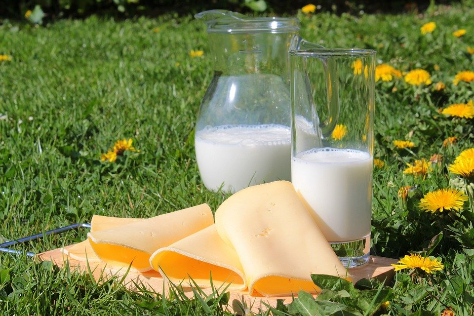 mleko i sery to najlepsze źródło naturalnego wapnia