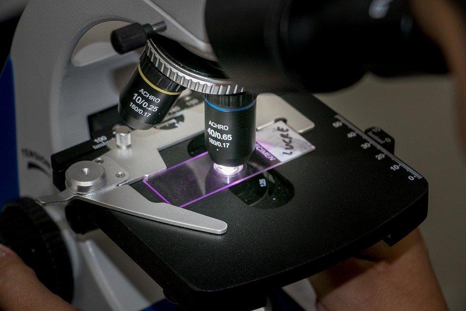 oglądanie rozmazu szyjki macicy pod mikroskopem