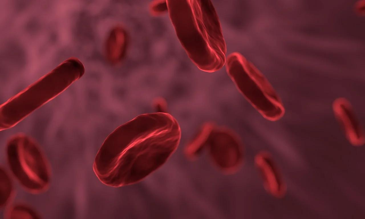 Czerwienica, inaczej nadkrwistość lub policytemia (pojęć tych będziemy używać wymiennie) to grupa chorób o różnym mechanizmie